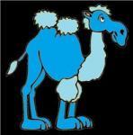 Голубой Верблюжонок фотография